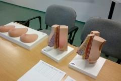 Seminář Samovyšetření prsu jako součást prevence karcinomu prsu